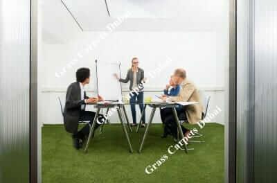 indoor grass1