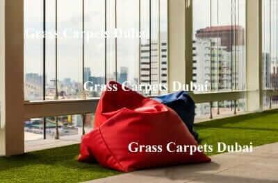 indoor grass3