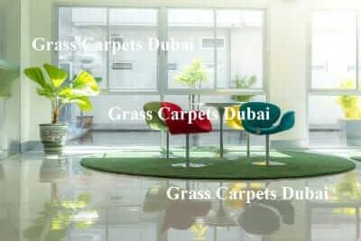 indoor grass4