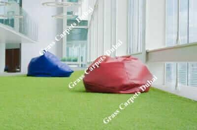 indoor grass5