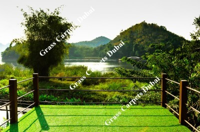 landscaping grass1