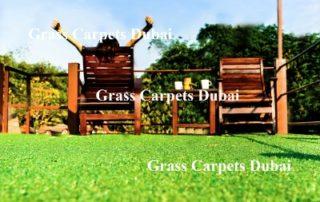 Lawn Grass Dubai
