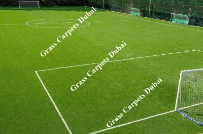 sports grass3