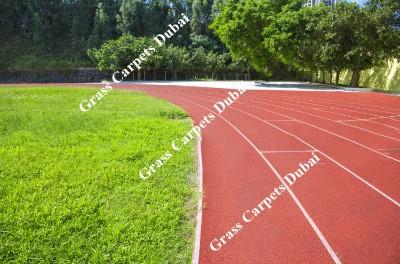 sports grass4