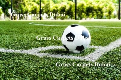 sports grass6