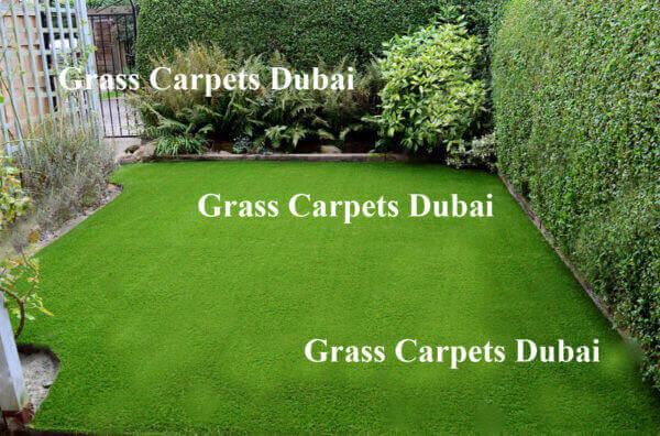 Landscaping-grass-carpets in Dubai